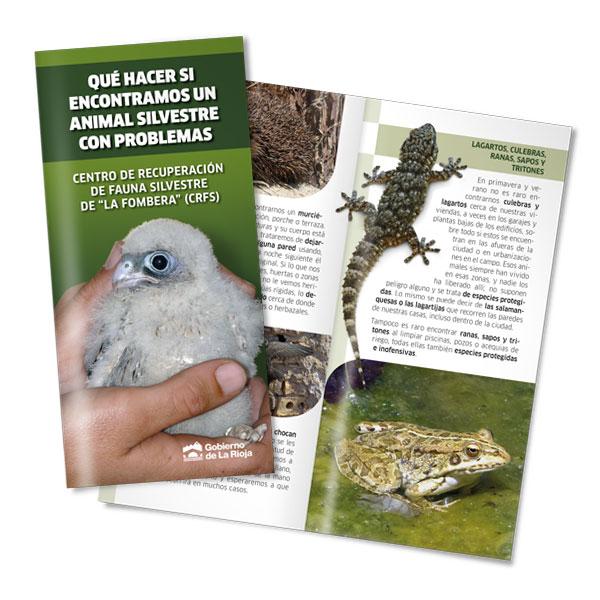 Publicaciones: Medio Ambiente, folleto informativo animales silvestres