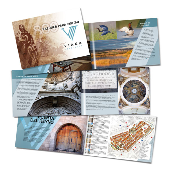 Catálogos: VIII Centenario de la Fundación de Viana